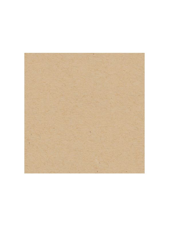 Oatmeal Solid Core Cardstock